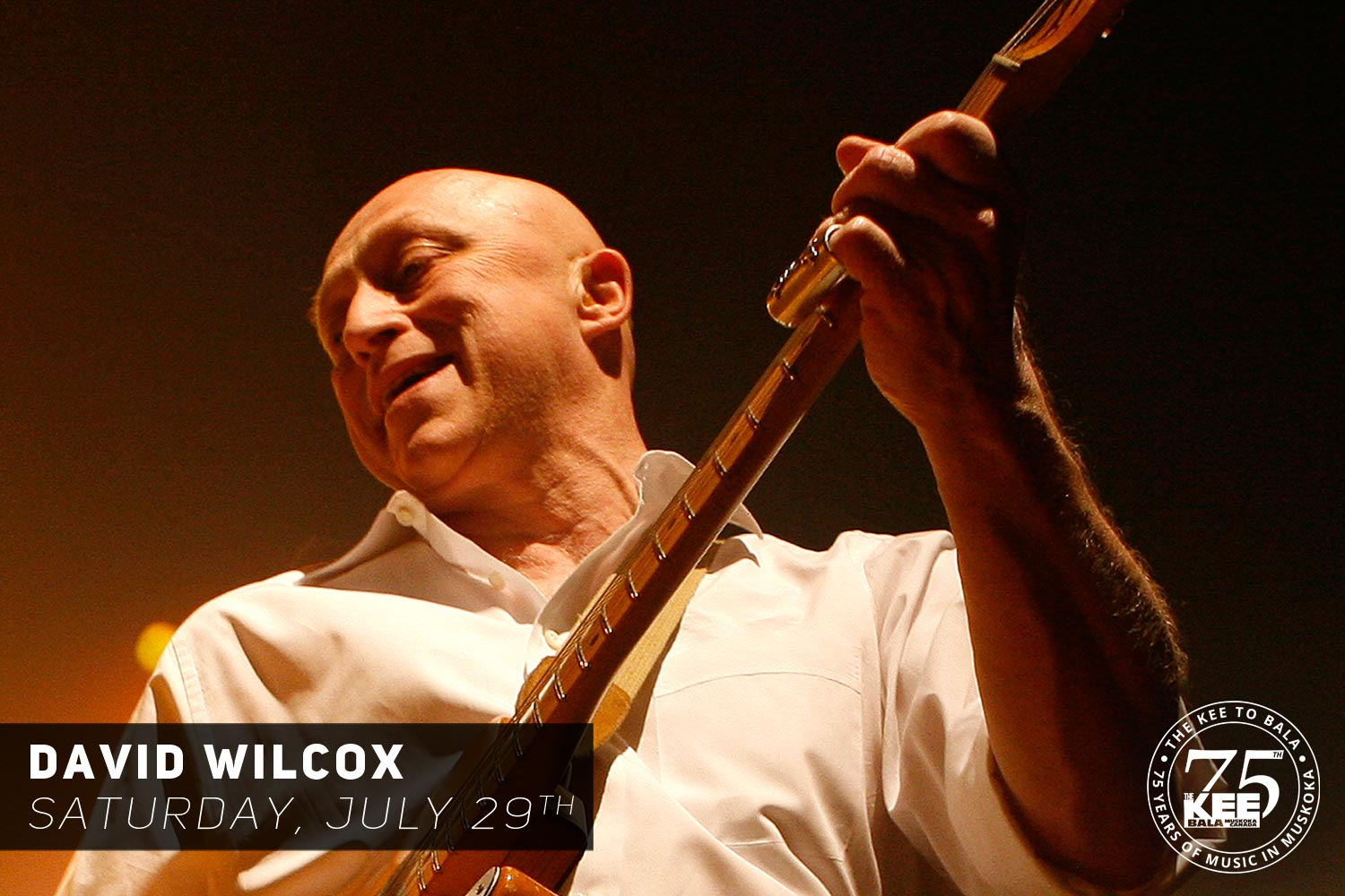 David Wilcox The KEE to Bala